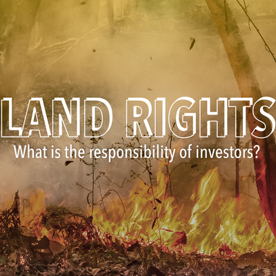 Profilbild för Land rights – what is the responsibility of investors?