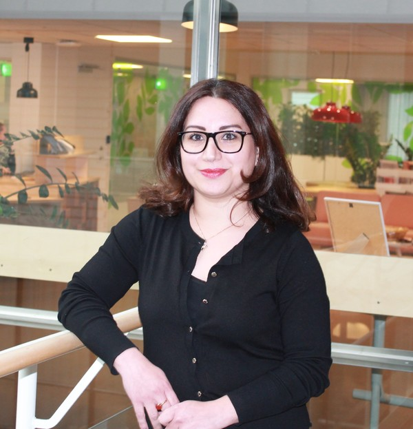 Profilbild för Rodabe Alavi